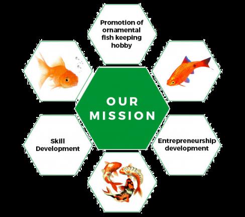 OFTRI-Mission